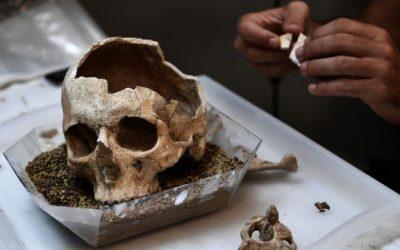 Русская служба Би-би-си: недалеко от Смоленска нашли два уникальных женских черепа