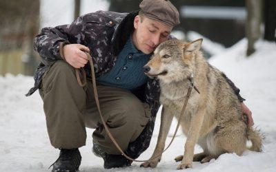 Экс-сварщик с приютом для собак