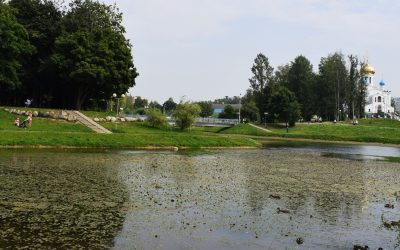 В пруду парка 1100-летия Смоленска выросла капуста