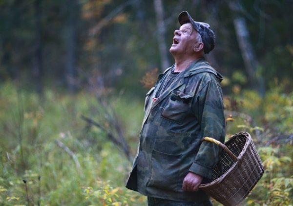 Известны результаты поисков пропавшего в смоленском лесу пенсионера