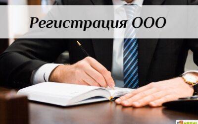 Регистрируем ООО с типовым уставом